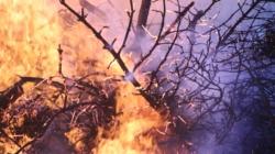 Pożar wysypiska śmieci w Sławęcicach