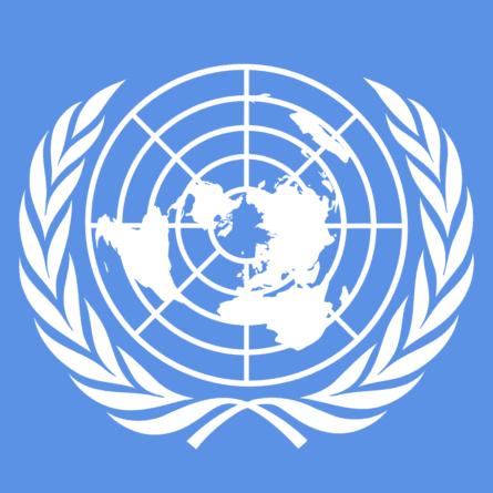Polska została wybrana na niestałego członka Rady Bezpieczeństwa ONZ!