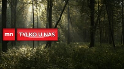 Narodowa ekologia – historia i zarys idei walki o ochronę przyrody
