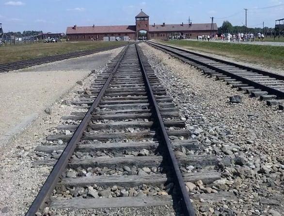 """J. Daniels – """"Ludzie piszą polskie obozy śmierci, bo są głupi i leniwi"""""""