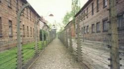Smolińska: W Auschwitz-Birkenau zginęły miliony osób [WIDEO]