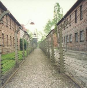 Wstrząsająca historia byłej więźniarki Auschwitz: To było piekło [WIDEO]