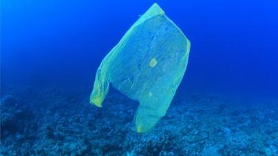 Australia rezygnuje z plastikowych torebek