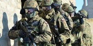 Polskie zielone ludziki na Litwie – konieczne czy możliwe?