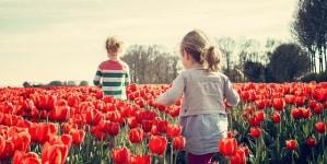 """W Berlinie przez 30 lat przekazywano dzieci pedofilom w ramach """"eksperymentu"""""""