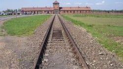 Polka pozywa Niemcy za cierpienia z czasów II wojny światowej [WIDEO]