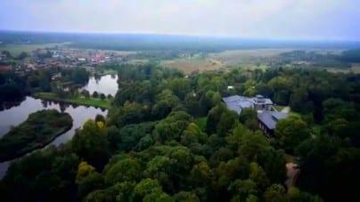 Wycinka w Puszczy Białowieskiej uwzględniona w procedurze praworządności? KE nie wyklucza