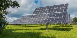 Zielony Ład: PGE przedstawia program neutralizacji klimatycznej