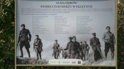 Brzeziny (łódzkie): Powstało Stowarzyszenie Rodzin Żołnierzy Wyklętych