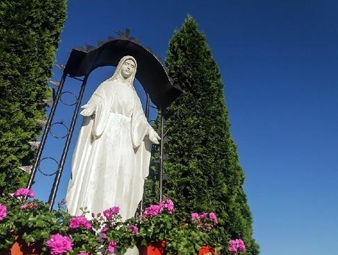 Profanacja wizerunku Matki Bożej to przestępstwo – analiza Ordo Iuris