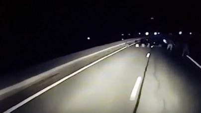 W Calais znów stają blokady imigrantów! Jest nagranie, na którym TIR taranuje jedną z nich