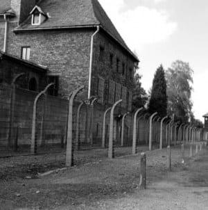IPN poszukuje esesmanów służących w niemieckich obozach na terenie Polski