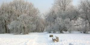Ferie zimowe jednak wydłużone? Rzecznik rządu komentuje