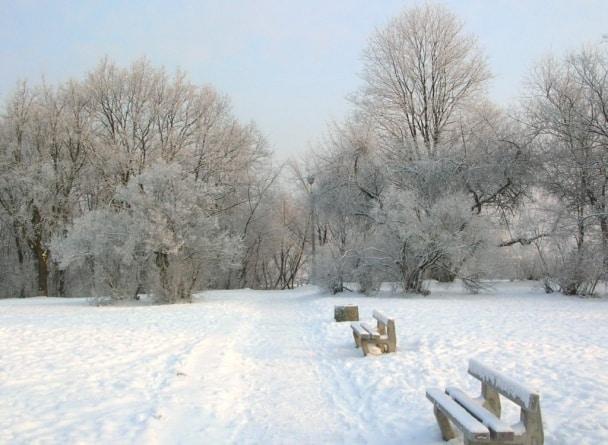 Mróz i śnieg uziemił wiatraki i panele słoneczne. Węgiel jednak potrzebny