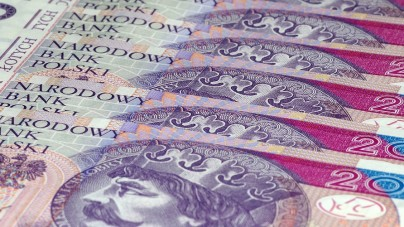 Wspólnie w obronie złotówki! Inicjatywa Prawicy RP oraz Kukiz'15 odpowiedzią na propozycje PO