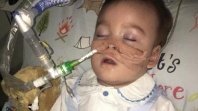 Lekarka Alfiego Evansa: W Polsce takie dzieci objęte są opieką