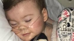 """Rodzice Alfiego chcą walczyć z prawem zezwalającym na eutanazję: """"Jesteśmy tu, by prosić was, abyście nie przestali walczyć o wartość życia"""""""