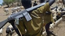 Nigeria: Boko Haram zamordowało 43 rolników