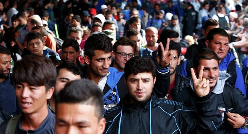 Imigranci z Libanu zatrzymani w lesie