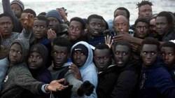 Niemcy ułatwiają imigrację z całego świata