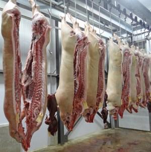 Stany Zjednoczone wstrzymały czasowo import polskiej wieprzowiny