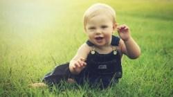 Psycholodzy piszą list do premiera: Żłobki nie są optymalną formą opieki nad dziećmi