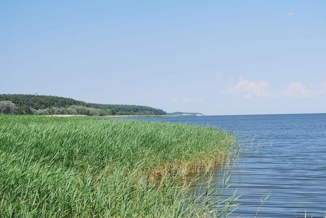 Marszałek Województwa Pomorskiego: Nie dla przekopu Mierzei Wiślanej