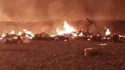 Meksyk: Wybuch rurociągu. Co najmniej 20 ofiar śmiertelnych
