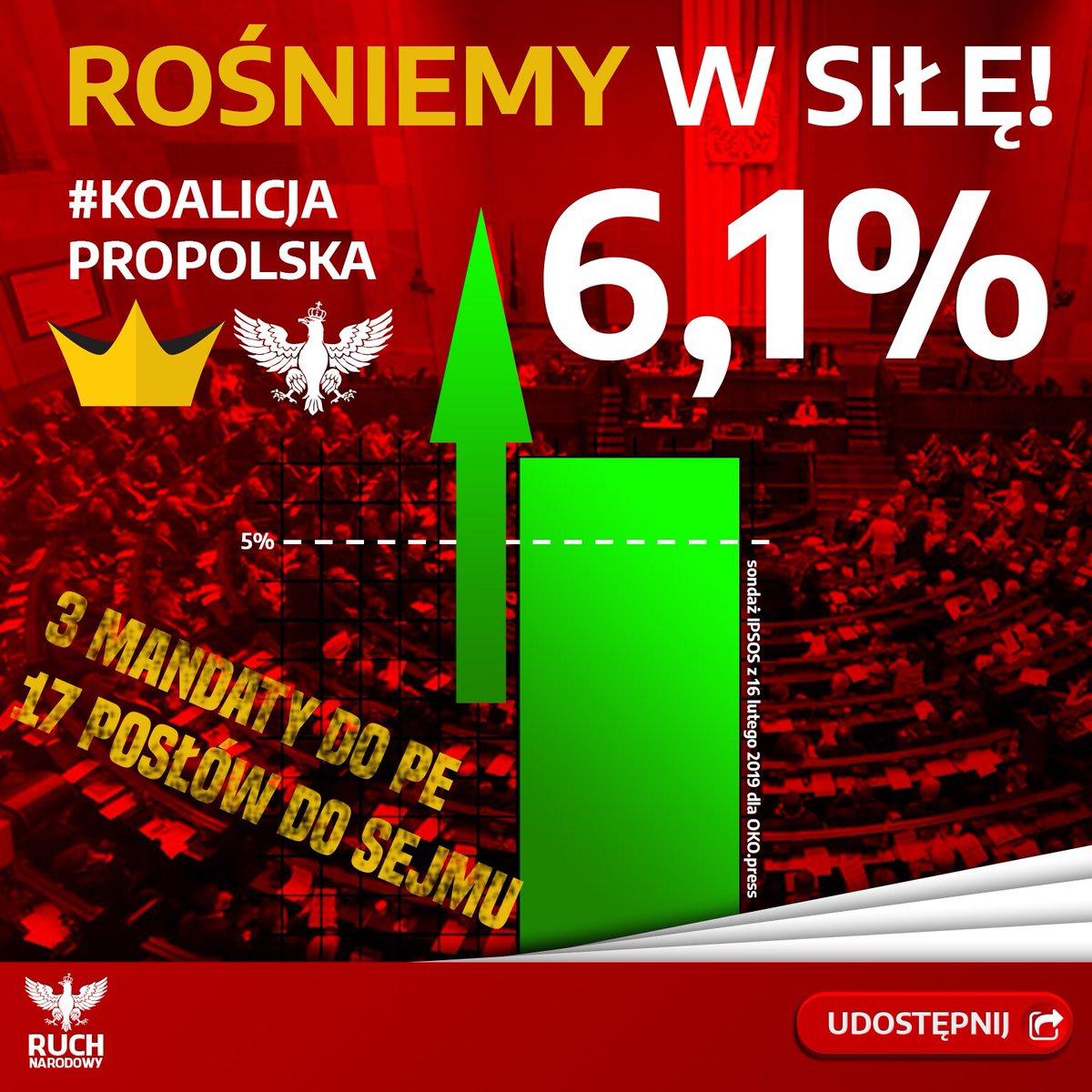 Przełomowy sondaż! Koalicja Propolska z mandatami w PE i silną reprezentacją w Sejmie