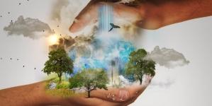 """Niemcy chcą poświęcić budżet na """"ratowanie klimatu"""". Rząd zadłuży się na miliardy euro"""