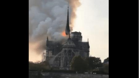"""Islamscy imigranci cieszą się z pożaru Notre-Dame: """"To wasz problem białasy"""""""