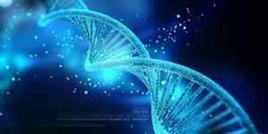 Chiński naukowiec skazany na 3 lata więzienia za modyfikacje ludzkiego DNA