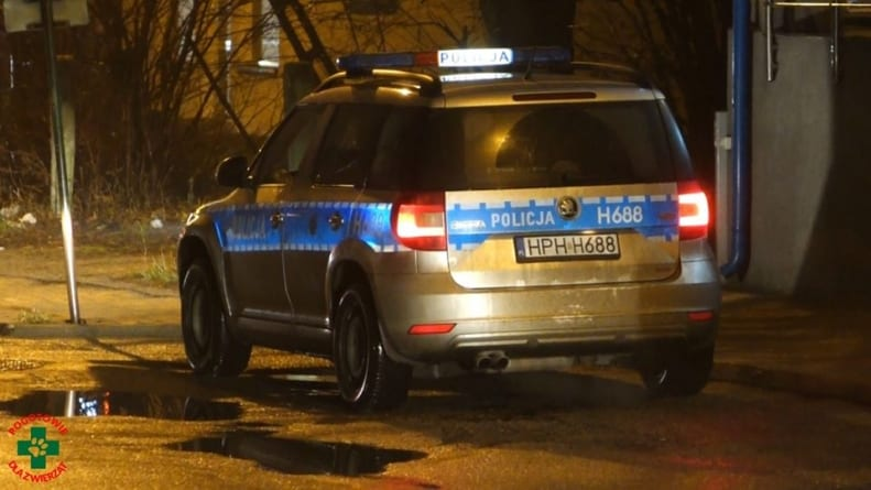 Belgijska prokuratura: Matka Ibrahima złamała prawo