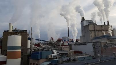 Produkcja przemysłowa rośnie pomimo panujących restrykcji