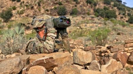 Armia unijna coraz bliżej? Jest propozycja czternastu krajów