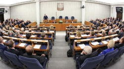 Nowela o ochronie zwierząt: Będą poprawki Senatu