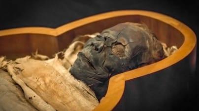 Niecodzienne znalezisko w Lublinie. Mumia w szkole
