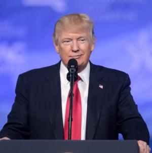 """""""DGP"""": Fort Trump zakładnikiem wyborów w USA"""