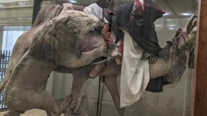 """USA: Muzeum ukrywa XIX-wieczną ekspozycję, ponieważ """"jest bolesna dla osób kolorowych"""""""