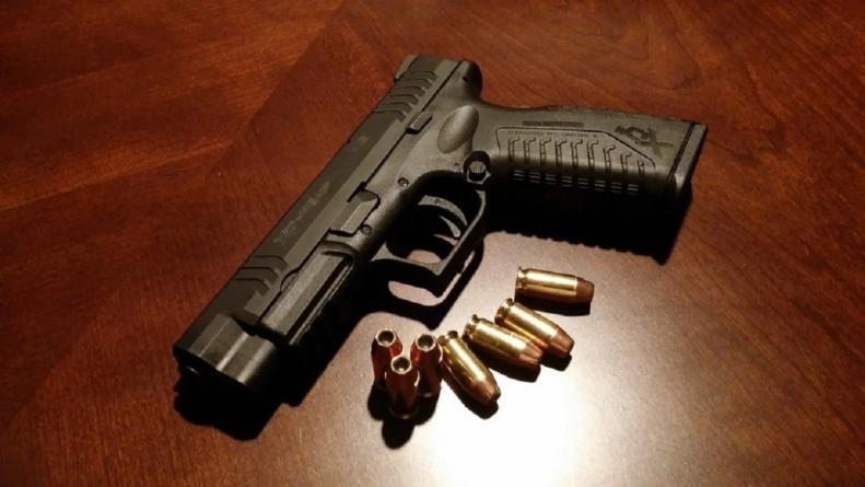 Polacy poszli po rozum do głowy? Wzrosła liczba posiadanej broni palnej